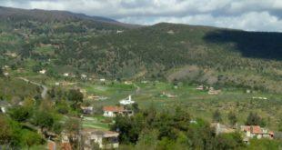 بلدية عين السبت تستفيد من مشاريع قطاعية