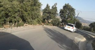 الثروة الغابية عبر اقليم بلدية عين السبت