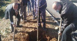 بلدية عين السبت | حملة تشجير تحت شعار #فلنغرسها